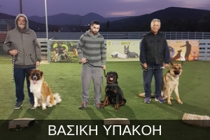 http://dogspotk9.gr/wp-content/uploads/2018/09/ΒΑΣΙΚΗ-ΥΠΑΚΟΗ.jpg