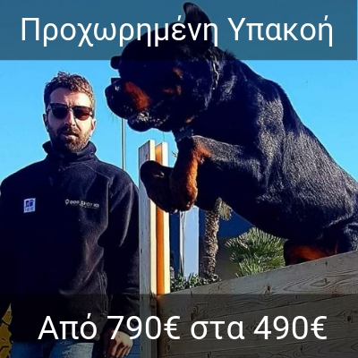 7bd091fd2494 Εκπαίδευση Σκύλου Τιμές - DOGSPOT K9