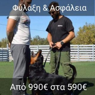 http://dogspotk9.gr/wp-content/uploads/2019/02/Φύλαξη-και-Ασφάλεια-2-320x320.jpg